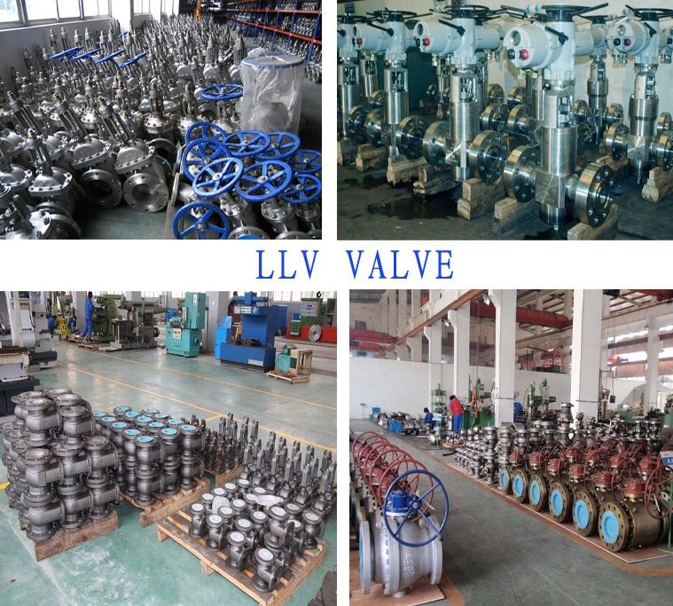 China LLV Group