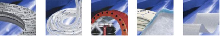 Frenzelit-Werke GmbH & Co. KG