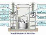 Реактор на быстрых нейтронах БН-1200 для АЭС начнут строить не раньше 2020 года