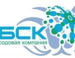 Башкирская содовая компания попала в рейтинг 500 крупнейших компаний России
