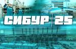 «СИБУР Холдинг» отмечает 25 лет со дня основания