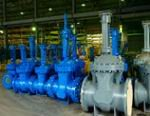 Благовещенский арматурный завод принял участие в выставке достижений производственного и научно-технического потенциала