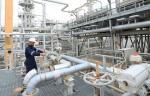 Главгосэкспертиза одобрила возведение газохимического комплекса в Ленинградской области
