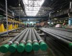 Таганрогский металлургический завод принял участие в экологических мероприятиях Ростовской области
