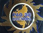 Акционеры РАО ЭС Востока оставили прежним состав совета директоров холдинга