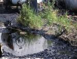 АО «Руст 95» стал виновником загрязннения окружаещей среды