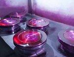 ЗАО «РОУ» представила каталог запасных частей для выпускаемой трубопроводной арматуре